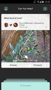 Jelly - közösségi kérdés-válaszoló platform okostelefonra