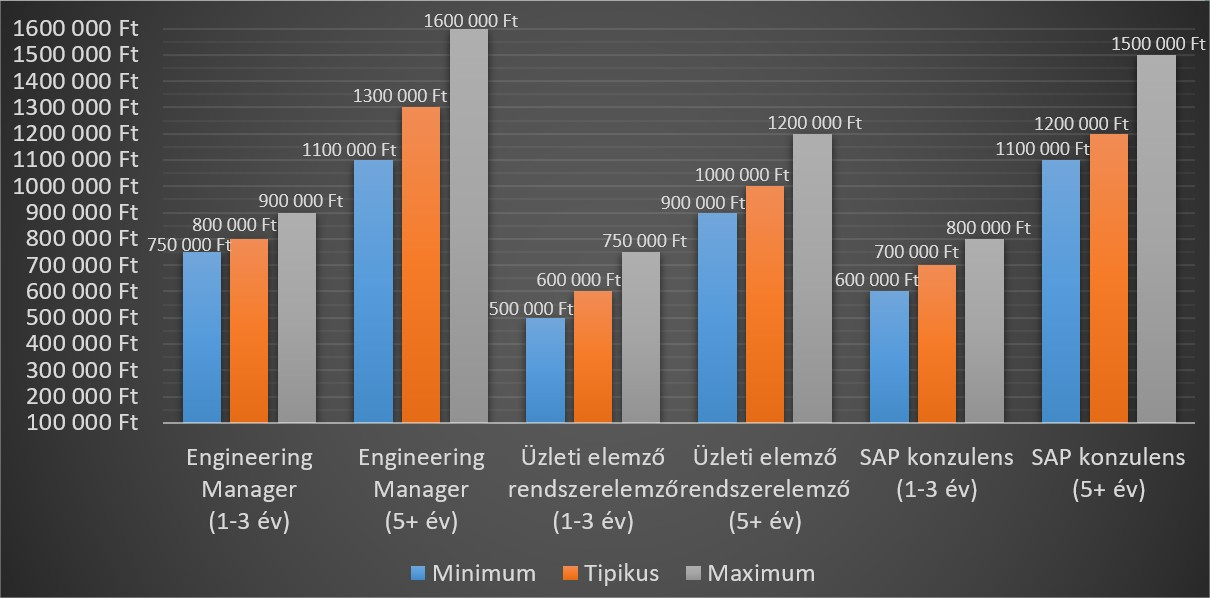 hwsw_hays_tanacsado_berek_2019_SAP_businessanalyst_engineering