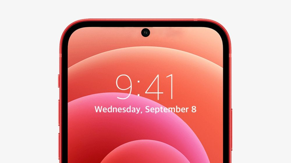 iphone_punch_hole